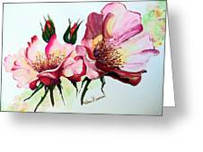 A Rose Is A Rose Greeting Card by Karin  Dawn Kelshall- Best