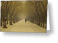 A Royal Stroll Greeting Card by Aaron S Bedell