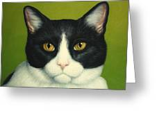 A Serious Cat Greeting Card by James W Johnson