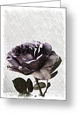 A Sketch Of A Rose Greeting Card by Sherry Hallemeier