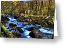A Smoky Mountain Autumn Greeting Card by Mel Steinhauer