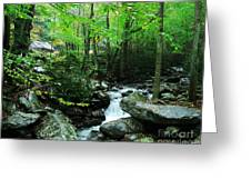 A Smoky Mountain Stream 2 Greeting Card by Mel Steinhauer