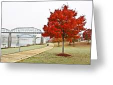 A Soft Autumn Day Greeting Card by Tom and Pat Cory