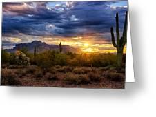 A Sonoran Desert Sunrise Greeting Card by Saija  Lehtonen
