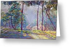 A Symphony Of Bush Colours Greeting Card by Lynda Robinson