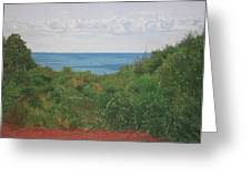 A View For Hannah Greeting Card by Harvey Rogosin