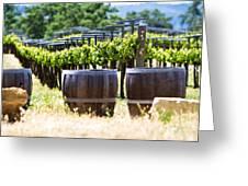 A Vineyard With Oak Barrels Greeting Card by Susan  Schmitz