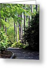 A Walk In The Shade Greeting Card by Maria Urso