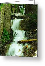 A Waterfall In Spring Thaw Greeting Card by Jeff  Swan
