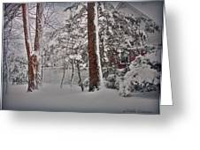 A Winter Wonderland Greeting Card by Mikki Cucuzzo