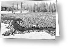 A Winter's Afternoon In Yellowstone Greeting Card by Sandra Bronstein