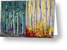 A Year In An Aspen Forest Greeting Card by Stanza Widen