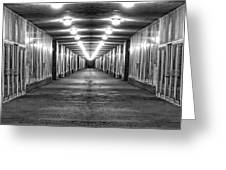 Abandoned Strip Mall Panoramic Greeting Card by Tom Mc Nemar