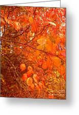 Ablaze Greeting Card by Elizabeth Carr