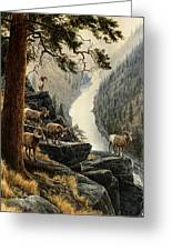 Above The River Greeting Card by Steve Spencer