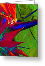 Abstract Bird Greeting Card by Ron Regalado