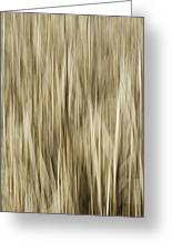 Abstract Cattails Greeting Card by Thomas Young