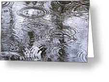 Abstract Raindrops Greeting Card by Christina Rollo