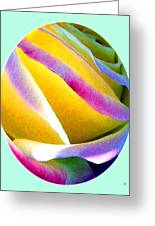 Abstract Rose Oval Greeting Card by Will Borden