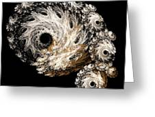 Abstract Seashell Greeting Card by Andee Design