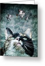 Abyss Cat Nr 2 Greeting Card by Laura Melis