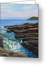 Acadia National Park Greeting Card by Jack Skinner