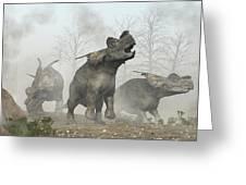 Achelousauruses Greeting Card by Daniel Eskridge