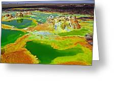 Acid Lakes Of Dallol Volcano Greeting Card by Liudmila Di