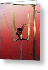 Acrobatic Aerial Artistry1 Greeting Card by Anne Mott