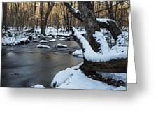 Adamsville Brook Greeting Card by Andrew Pacheco