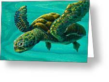 Aeko Sea Turtle Greeting Card by Emily Brantley