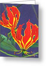 African Flame Lily Greeting Card by Sylvie Heasman
