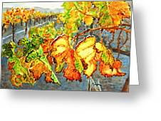 After The Harvest Greeting Card by Karen Ilari