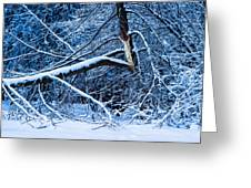 After The Icy Rain - Featured 3 Greeting Card by Alexander Senin