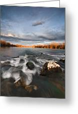After The Rain Greeting Card by Davorin Mance