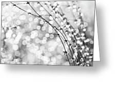 After The Rain Greeting Card by Theresa Tahara