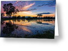 After The Rains Greeting Card by Mary Amerman