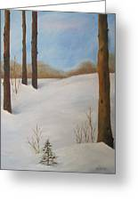 After The Storm Greeting Card by Nancy Craig