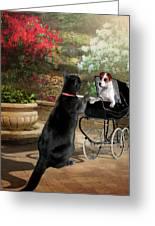 Afternoon Stroll Greeting Card by Regina Femrite