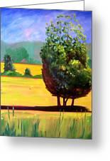 Afternoon Sun Greeting Card by Nancy Merkle
