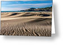 Agate Beach Dunes And Yaquina Head Light Greeting Card by Greg Stene