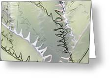 Agave Abstract Greeting Card by Ben and Raisa Gertsberg