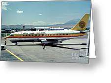 Aircal Boeing 737 Greeting Card by Wernher Krutein