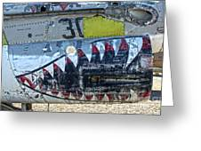 Airplane Graveyard - 06 Greeting Card by Gregory Dyer