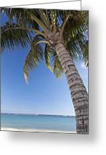 Ala Moana Beach Greeting Card by Brandon Tabiolo