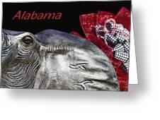 Alabama Greeting Card by Kathy Clark