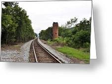 Alabama Tracks Greeting Card by Verana Stark