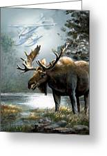 Alaska Moose With Floatplane Greeting Card by Regina Femrite