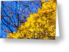 Alchemy Of Nature - Golden Streams Greeting Card by Alexander Senin