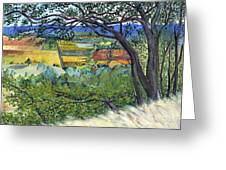 Alexander Valley Vinyards Greeting Card by Asha Carolyn Young